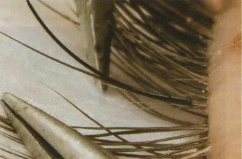 Крепление искусственной ресницы на натуральную (сверху)