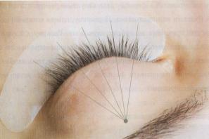 Схема Наращивание ресниц полусолнышком.