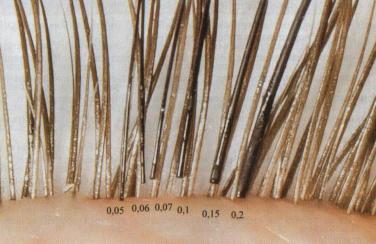 Сравнение ресниц для наращивания толщиной 0,05, 0,06; 0,07; 0,1; 0,15;0,2 миллиметров на натуральных ресницах.