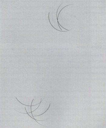 Ресницы из норки и искусственного волокна